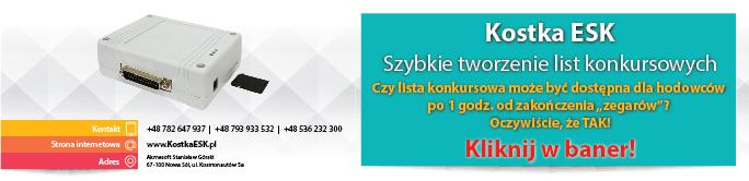 KostkaESK - szybkie tworzenie list konkursowych